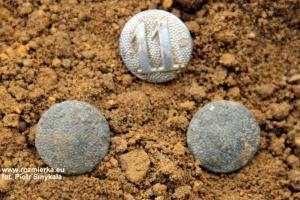 Guziki wojskowe z grobu w Rozmierzy