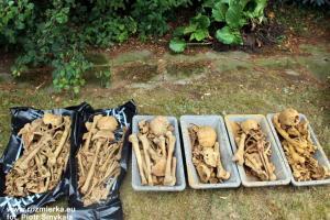 Szczątki żołnierzy w Rozmierzy