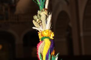 Kolorowa palma