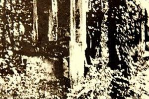 Kaplica w parku przypałacowym w Kalinowicach. Zdjęcie przed 1945 r.