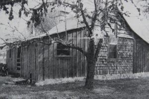 Typowy dom w Teksasie. Dom wybudowany w 1873 r. przez rodzinę Haiduk
